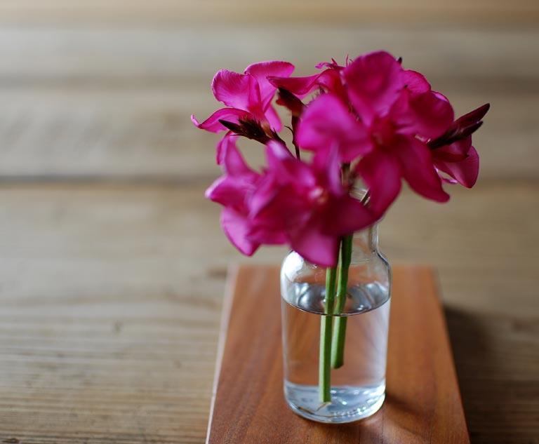 花を活けたガラス瓶