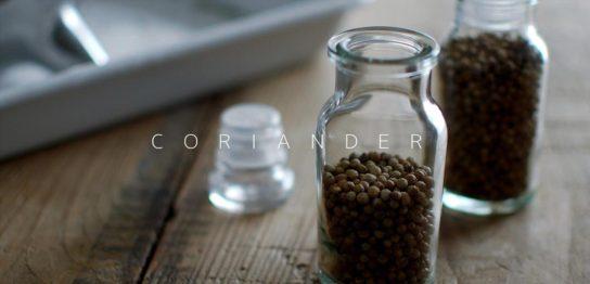スパイス瓶に入ったコリアンダーシード
